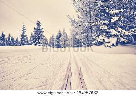 Retro Stylized Photo Of Cross-country Skis On Tracks