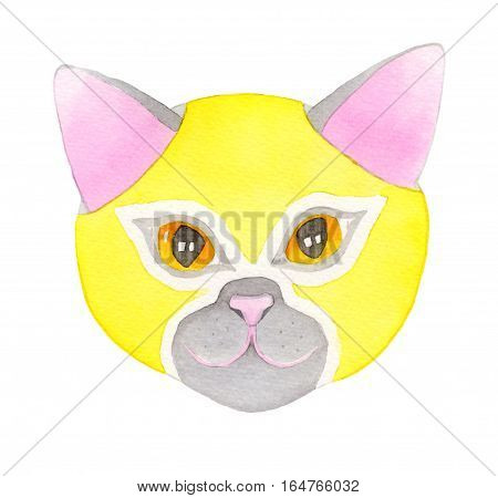 Cat fighter. Luchador or fighter mask. Hand-drawn lucha libre animal in yellow wrestling mask - colorful helmet on the white background. Real watercolor drawing.