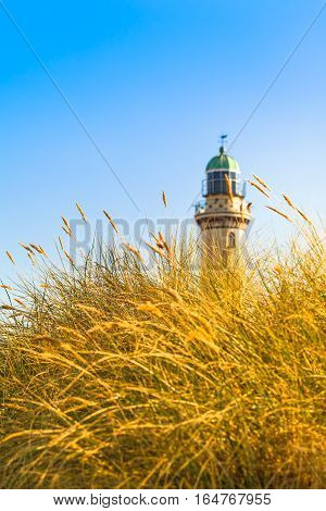 Beach grass in the sunshine and lighthouse tower at the background