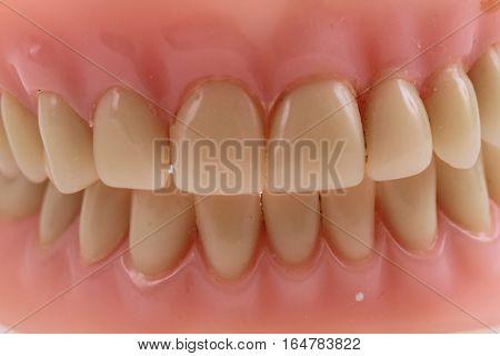 Teeth Prothesis Background