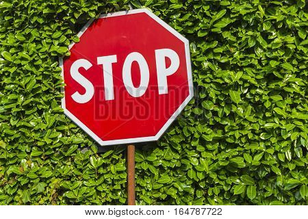 Red Hexagonal Stop Sign On Metal Pole