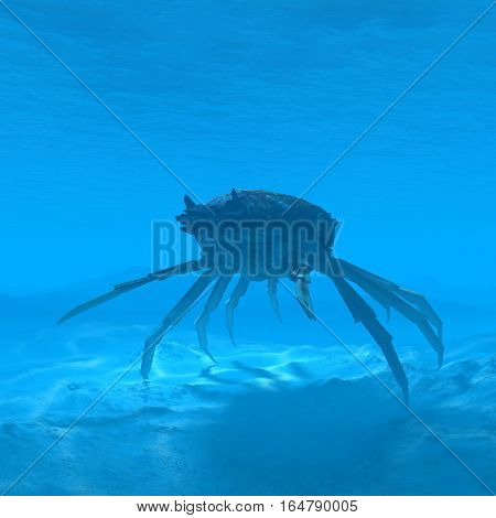 silhouette crab underwater with caustic 3d rendering silhouette