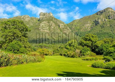 The Kirstenbosch National Botanical Garden, an important botanical garden nestled at the foot of Table Mountain in Cape Town, South Africa, in the summer season. Sunny day.