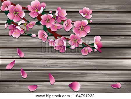 pink sakura on old grey wooden boarderes