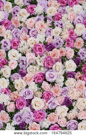background of artificial roses purple, pink, beige, white
