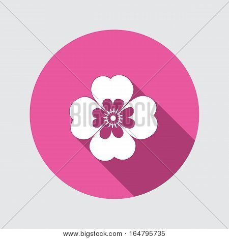 Spring flower. Camomile, Chamomile, forget-me-not icons. Floral symbol. Round circle flat icon with long shadow. Vector