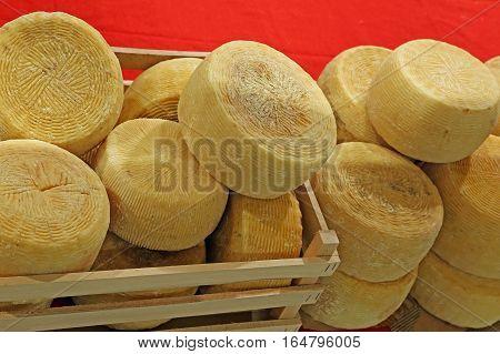 Wheels Of Cheese Called Caciotta In Italian Language