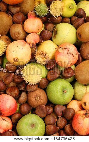 Chestnuts Pomegranates Big Apples And Many Autumn Fruits