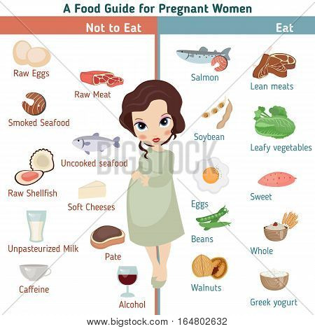 Pregnant woman diet infographic. A Food guide for pregnant woman.