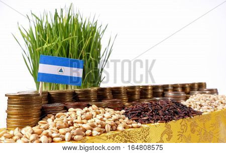 Nicaragua Flag Waving With Stack Of Money Coins And Piles Of Wheat And Rice Seeds