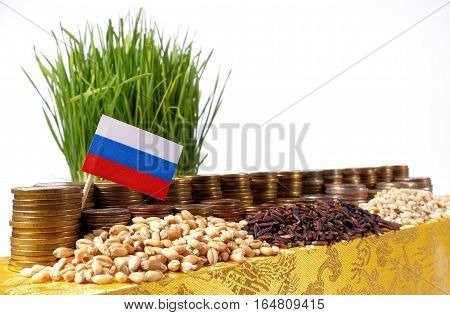 Russia Flag Waving With Stack Of Money Coins And Piles Of Wheat And Rice Seeds
