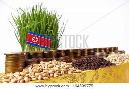 North Korea Flag Waving With Stack Of Money Coins And Piles Of Wheat And Rice Seeds