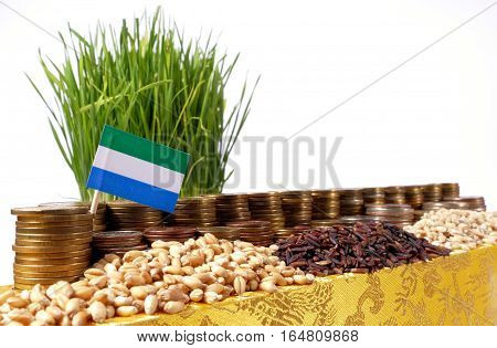 Sierra Leone Flag Waving With Stack Of Money Coins And Piles Of Wheat And Rice Seeds