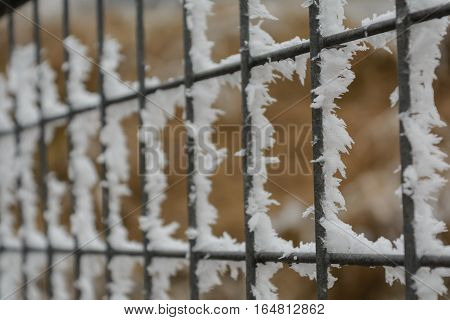 Fence of a barrier with ice crystals - hoarfrost