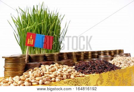 Mongolia Flag Waving With Stack Of Money Coins And Piles Of Wheat And Rice Seeds