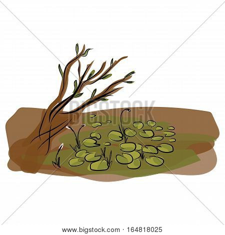 graphic design editable for your design, hand drawn color wetland isolated on white background. Vector Illustration.