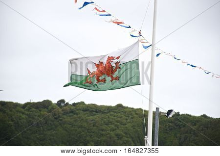 Welsh Flag, flag of wales on a white mast blowing in the wind with mountains in the background. Y Ddraig Goch