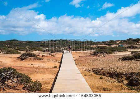 Portugal - Wooden Path On The Beach