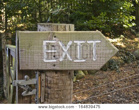 Wooden Exit sign arrow in a forest