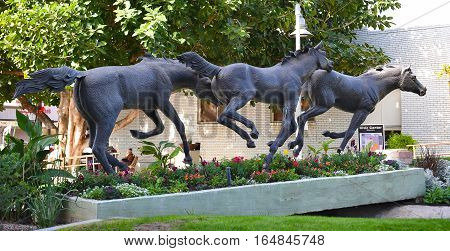 SCOTTSDALE ARIZONA - DECEMBER 9 2016: The Yearlings. By artist George Ann Tognoni the bronze sculpture is at the entrance to the Civic Center Mall.