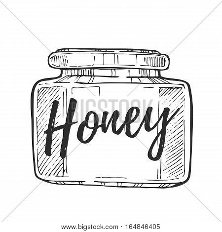 Honey jar freehand pencil drawing isolated on white background vector illustration. Organic nature sweet product, delicious traditional food monochrome sketch. Honey jar icon in vintage style. Hand drawn honey jar.