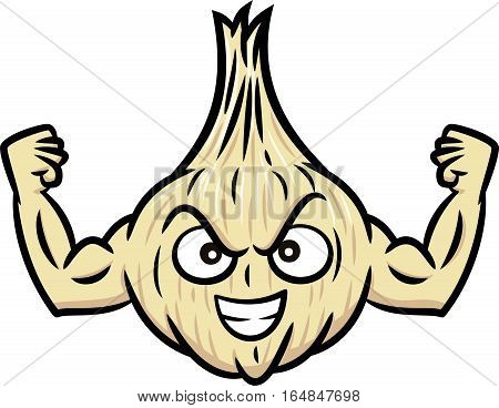 Strong Muscular Garlic Cartoon Character. Vector Illustration Isolated on White.