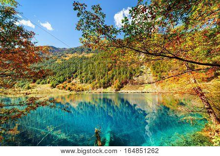 Amazing Autumn Landscape. Fantastic Lake With Azure Water