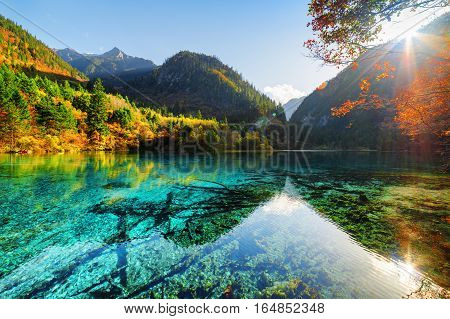 Scenic View Of The Five Flower Lake Among Woods And Mountains