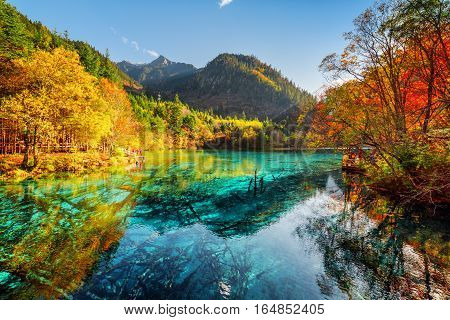 Beautiful View Of The Five Flower Lake With Azure Water
