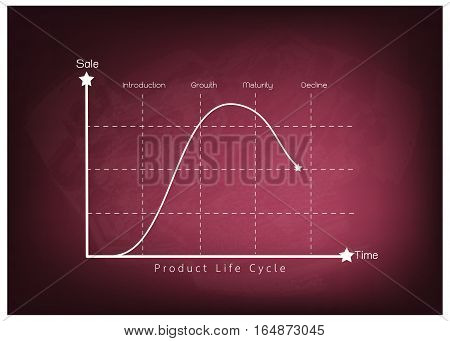 Business and Marketing Concepts 4 Stage of Product Life Cycle Chart on Chalkboard.