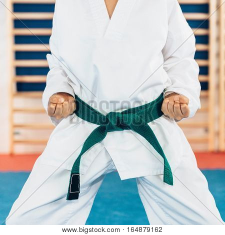 Tae kwon do stance, toned image , square