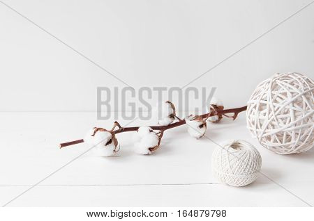 Minimal feminine elegant composition with cotton and balls for blogs, shops and social media