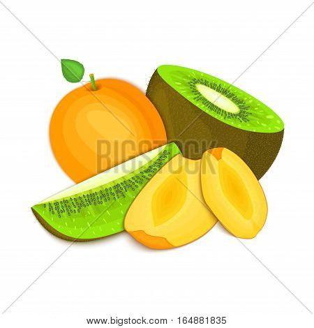 Composition of juicy apricot and kiwi. Ripe vector kiwifruit and apricot fruits whole and slice appetizing looking. Group of tasty fruits for design packaging of juice, breakfast healthy eating vegan