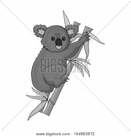 Australian koala icon in monochrome design isolated on white background. Australia symbol stock vector illustration.