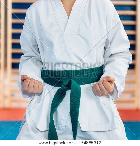Tae kwon do stance, toned image, indoor scene
