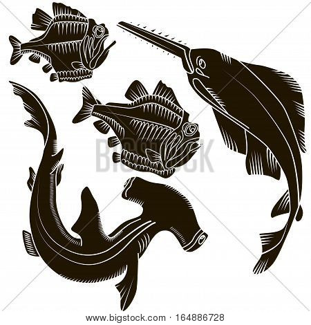 Set of black design elements isolated sharks and fish piranha on white background. This image is a vector illustration.