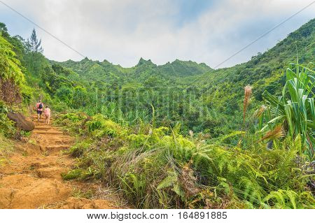 Hikers in Kalalau trail, Kauai Island, Hawaii