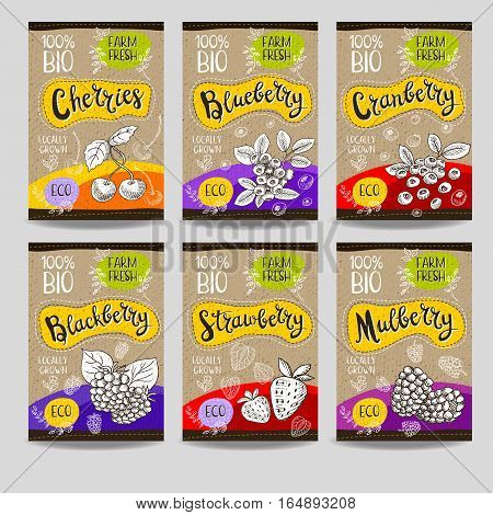 Set of colorful labels, sketch style, food, spices, cardboard texture. Cherries, strawberry, blueberry, cranberry, blackberry, mulberry. Organic, fresh, bio, eco. Hand drawn vector illustration.