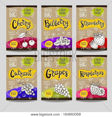 Set of colorful labels, sketch style, food, spices, cardboard texture. Cherry, bilberry, strawberry, currant, grapes, raspberries. Organic, fresh, bio, eco. Hand drawn vector illustration.