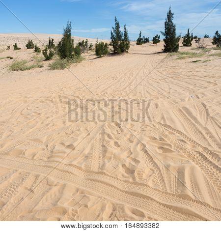 Wheel Track On White Sand Dune Desert In Mui Ne, Vietnam