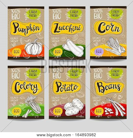 Set of colorful labels, sketch style, food, spices, cardboard texture. Pumpkin, zucchini, corn, celery, potato, beans. Vegetables, farm fresh. locally grown. Hand drawn vector illustration.