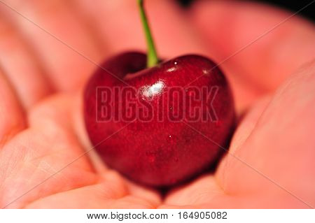 Red Cherry On Hand