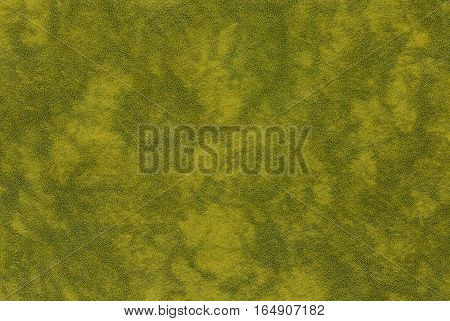 Green Color Leather Texture.