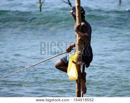Fishermen on stilts trying to catch a fish on the pole on the coast of Sri Lanka