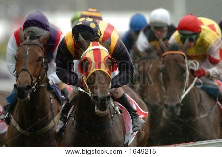 ganador de carreras de caballo