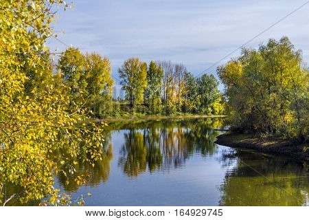 Autumn landscape on the Siberian river. The Chaus river ( a tributary of the Ob river )Kolyvan district Novosibirsk oblast Siberia Russia