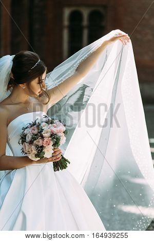 Beautiful Bride In The Long Bridal Veil
