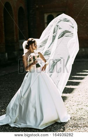 Wind Is Playing With The Bridal Veil