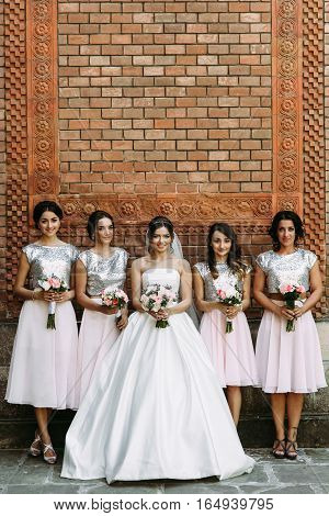 Amazing Bride In The Bridal Dress With The Bridesmaids