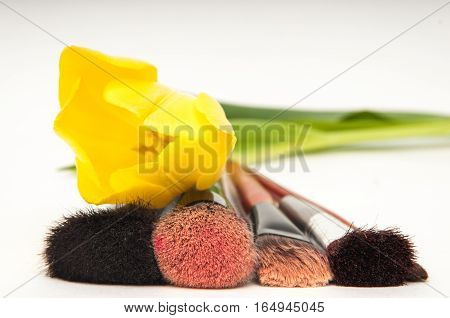 Make Up Brushes For Face Powder Isolated On White